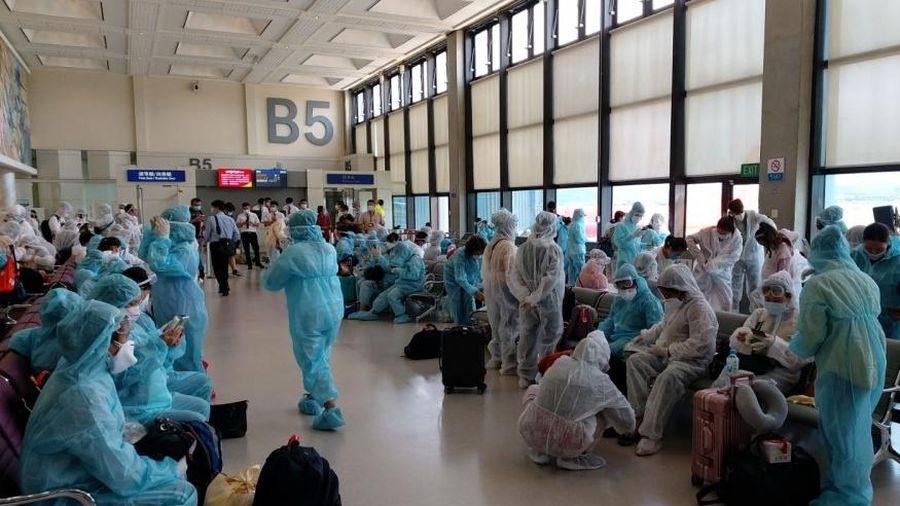 Thêm một chuyến bay đưa hơn 240 công dân Việt Nam từ Đài Loan, Trung Quốc về nước an toàn