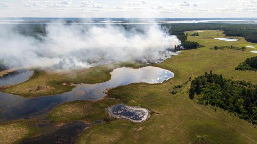 Nhiệt độ tại Siberia trong tháng 6 cao kỷ lục, gây cháy rừng tồi tệ