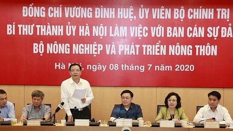 Hà Nội tìm phương án thúc đẩy đầu tư và phát triển nông nghiệp