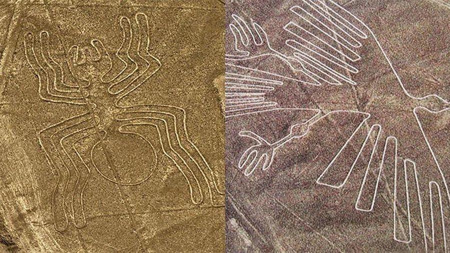 Những đường kẻ Nazca do người ngoài hành tinh để lại?