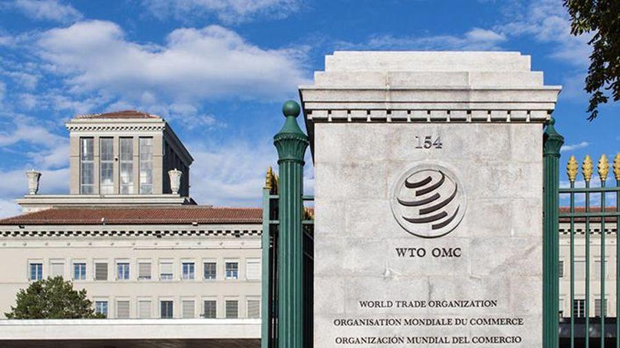 Chốt danh sách ứng cử viên tranh cử 'ghế nóng' tại WTO