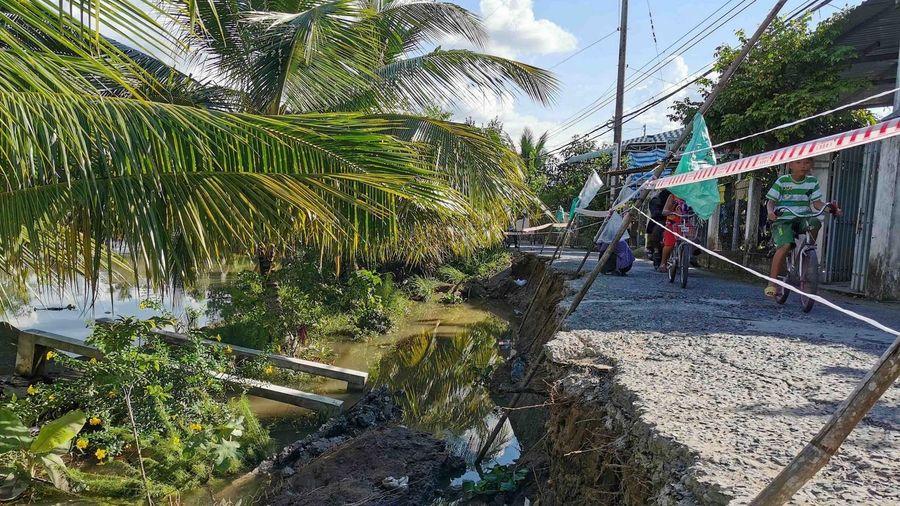 Cần Thơ: Sạt lở bờ sông Cái Tắc gần mộ cụ Phan Văn Trị