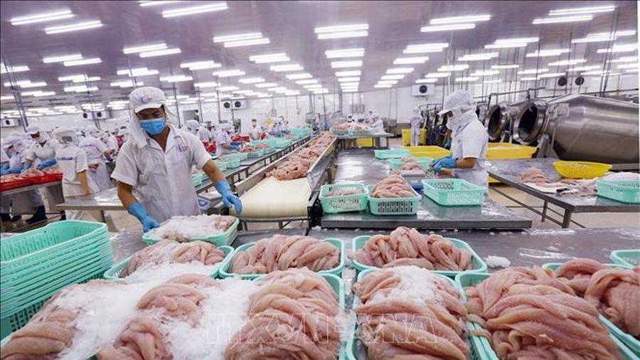 Các viện nghiên cứu quốc tế nhận định về triển vọng kinh tế Việt Nam