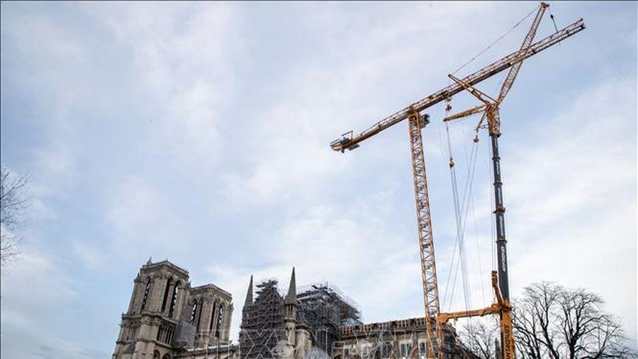 Đa số người dân Pháp ủng hộ phục dựng ngọn tháp của Nhà thờ Đức Bà Paris