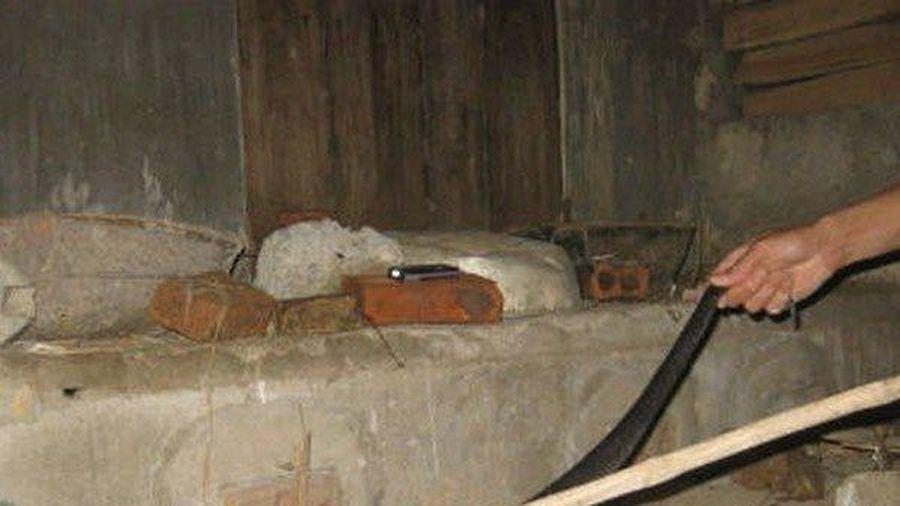 Mẹo đuổi rắn khổng lồ bò vào nhà trong những ngày hè đổ lửa