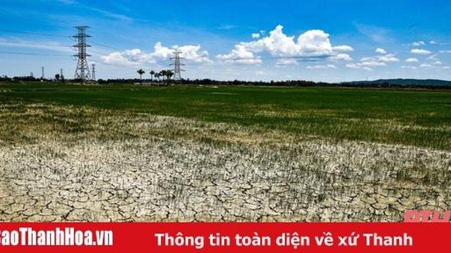 Nắng nóng đặc biệt gay gắt tại Thanh Hóa, có nơi trên 40 độ C