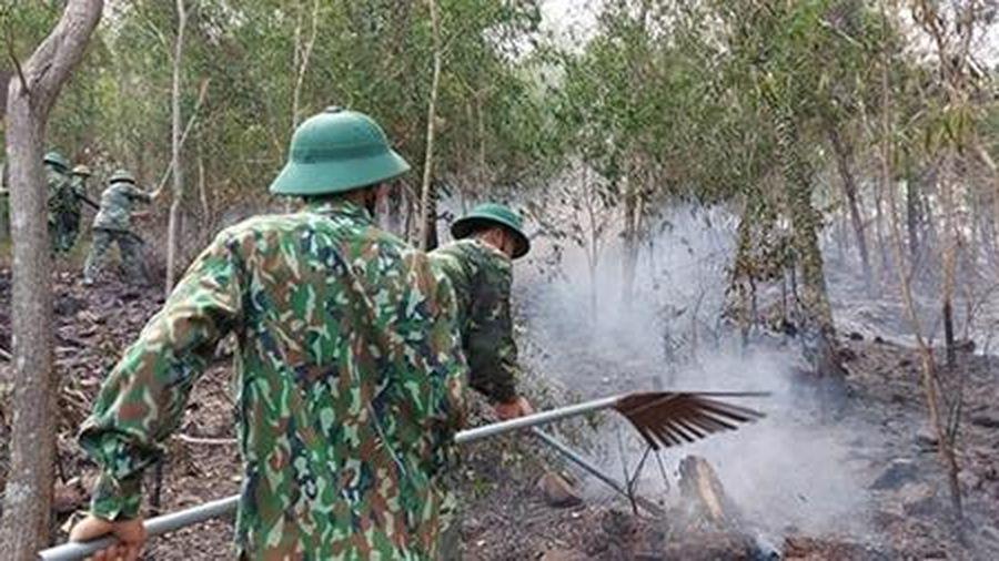Lại thêm một vụ cháy rừng thông ở Diễn Châu