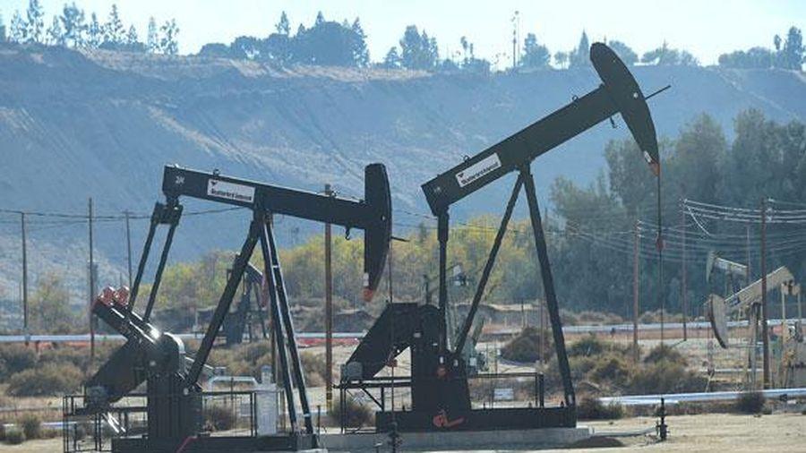 Giá dầu vẫn có tuần tăng 1% giữa đợt bùng phát lây nhiễm Covid-19 mới trên toàn cầu
