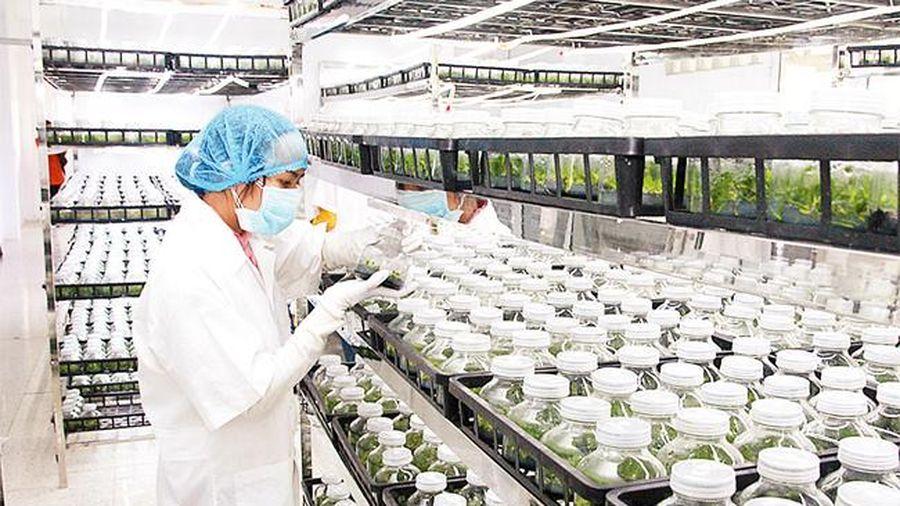 Tập trung đầu tư lĩnh vực nông nghiệp, nông thôn