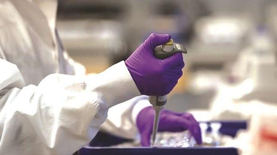 Vaccine phòng SARS-CoV-2: Bao giờ thì có?