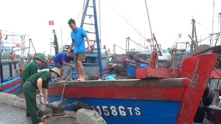 Thanh Hóa: Kêu gọi, hướng dẫn hàng nghìn tàu thuyền cập bến tránh bão