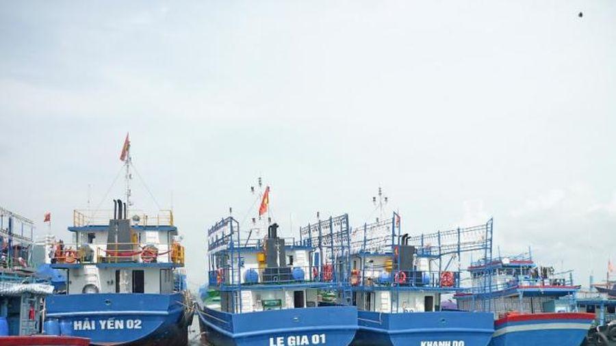 VASEP cần phản ánh khách quan tránh gây hiểu lầm tới cảng cá
