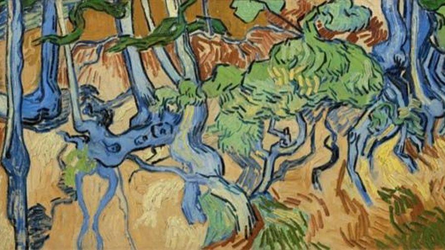 Nơi danh họa Van Gogh vẽ bức tranh cuối cùng