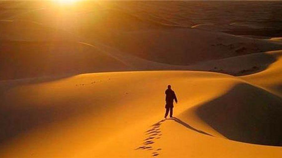 Sự tương tác biểu tượng trong 'Bài ca ngắn đi trên bãi cát'