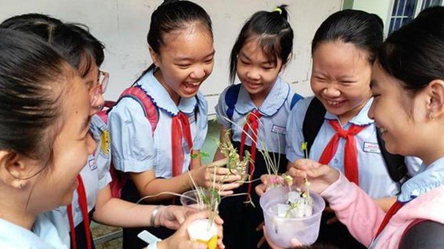 Thái Bình: Giáo viên thường xuyên nắm bắt tình hình sức khỏe học sinh trong hè