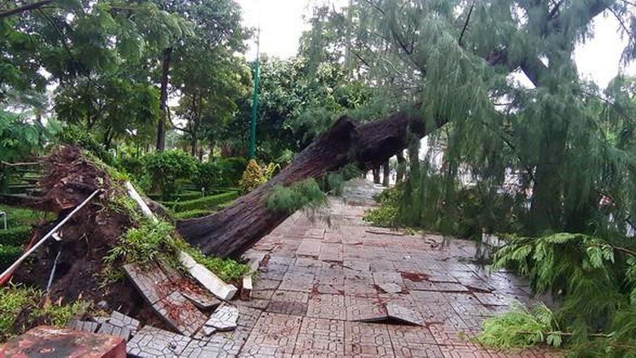Gần 100 căn nhà tại Cà Mau sập và tốc mái do bão số 2