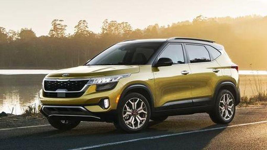 SUV Kia Seltos vừa ra mắt ở Việt Nam có danh số 'khủng' thế nào ở Ấn Độ?