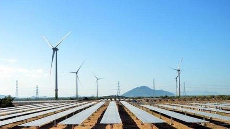 Chính phủ yêu cầu báo cáo cơ chế đấu thầu/đấu giá cho điện gió trong tháng 9