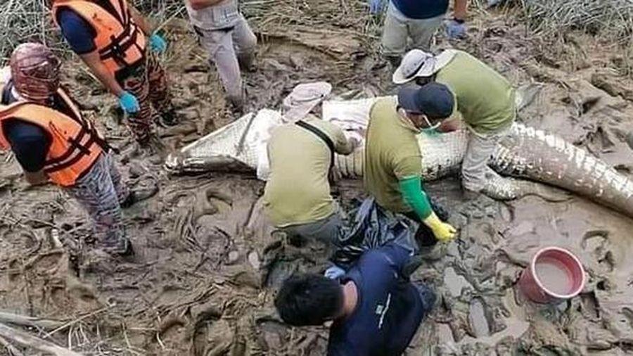 Malaysia: Phát hiện thi thể cậu bé 16 tuổi trong bụng cá sấu