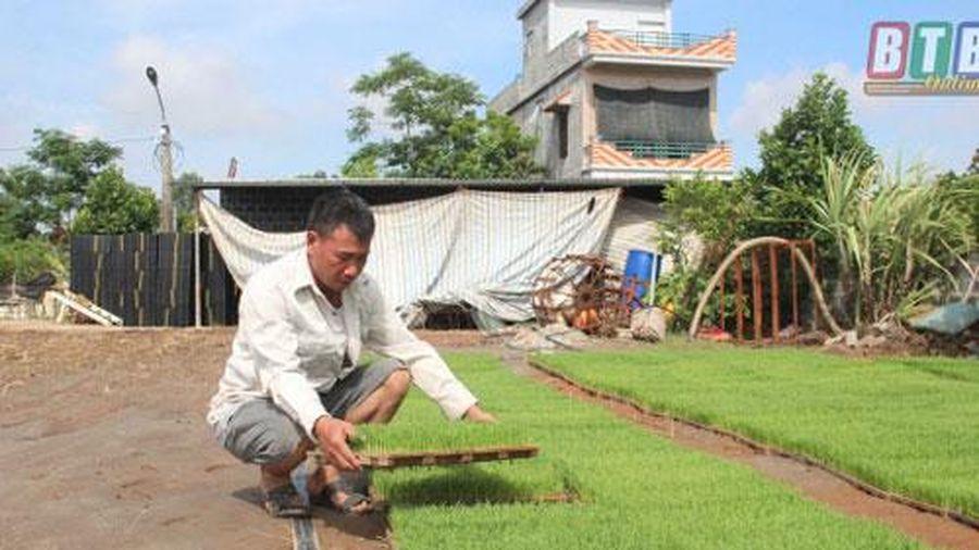 Thái Bình: Làm giàu từ tích tụ ruộng đất