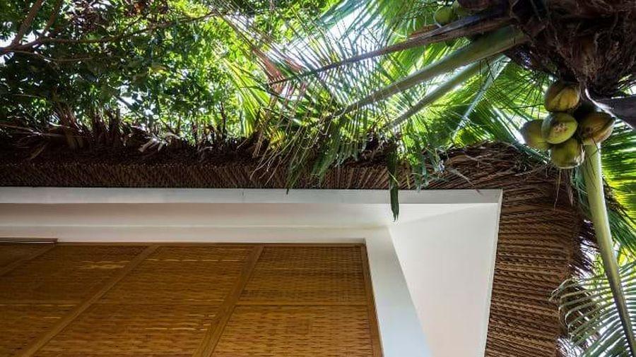 Độc đáo như ngôi nhà mái lá cọ, tường dệt gỗ ở Trà Vinh