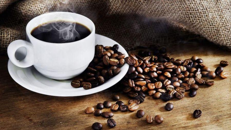 Giá cà phê hôm nay 4/8: Dao dộng ở mức 32.000 - 32.800 đồng/kg