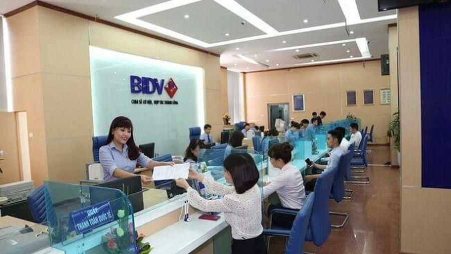 BIDV rao bán khoản nợ của Xây dựng Nam Sơn với mức khởi điểm hơn 245 tỷ đồng