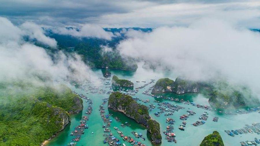Hải Phòng đề nghị doanh nghiệp du lịch hoàn kinh phí cho khách hủy tour