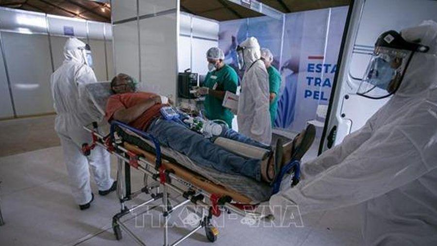 Công nghệ AI 'tiếp sức' bác sĩ Brazil chống COVID-19