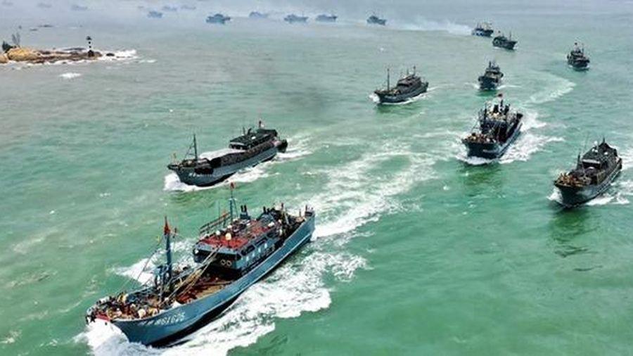 Trung Quốc cấm ngư dân câu mực ở vùng biển nước ngoài