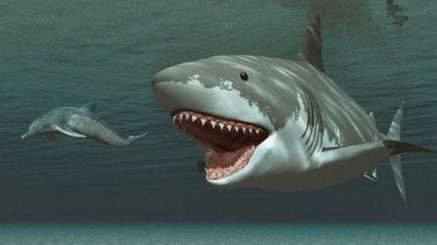 Top 10 quái vật ăn thịt kinh hoàng nhất từng tồn tại trên Trái Đất