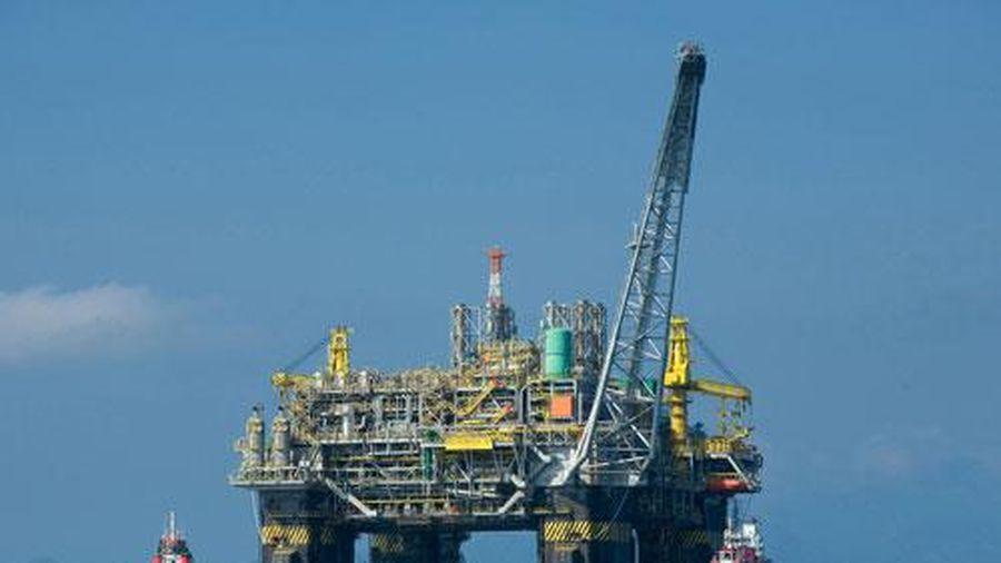 Giá xăng, dầu (5/8): Giảm nhẹ do ảnh hưởng của COVID-19