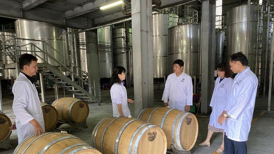 Sản xuất thử nghiệm rượu Whisky: Ưu tiên sử dụng nguyên liệu trong nước