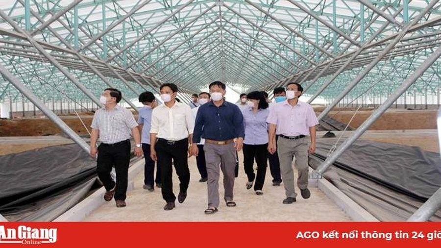 Phó Chủ tịch UBND tỉnh An Giang Trần Anh Thư khảo sát các dự án nông nghiệp ứng dụng công nghệ cao tại TX. Tân Châu, Châu Phú