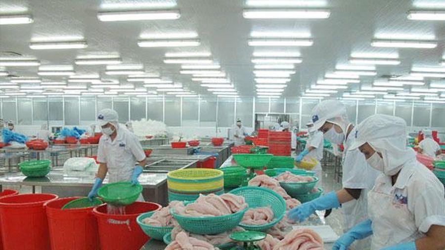 Cơ chế hạn ngạch thuế quan đối với tất cả các mặt hàng trừ gạo trong EVFTA