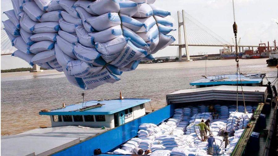 Doanh nghiệp Việt xuất khẩu gạo sang EU có phải đăng ký hạn ngạch?