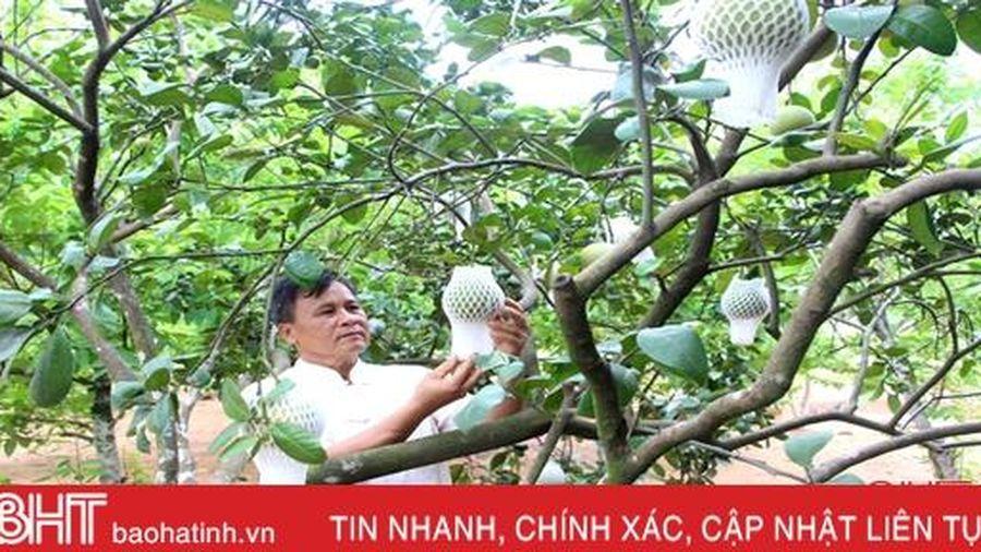 Những 'kỹ sư chân đất' làm vườn mẫu ở huyện miền núi Hà Tĩnh