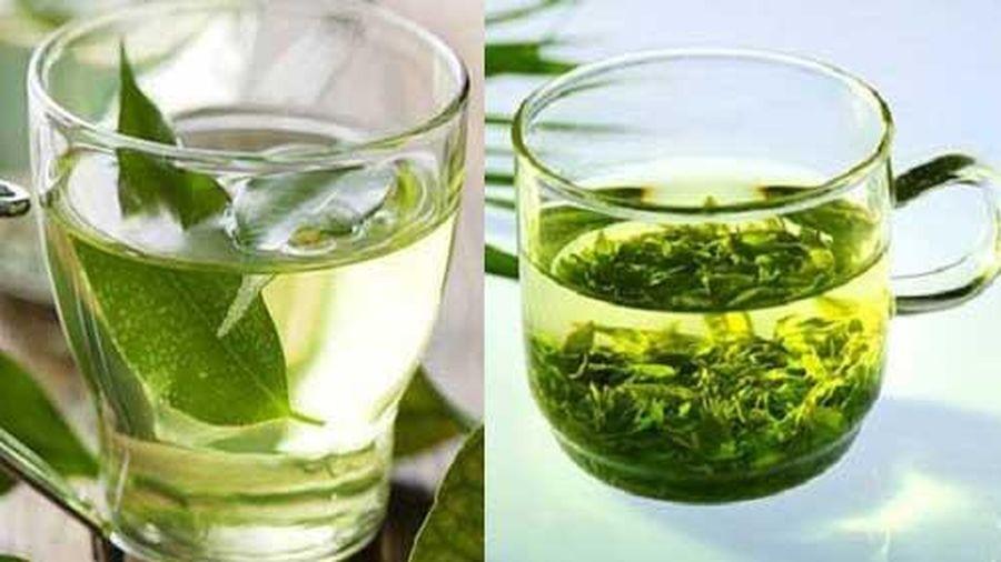 Uống nước chè mỗi ngày giúp giảm cân, ngăn ngừa ung thư