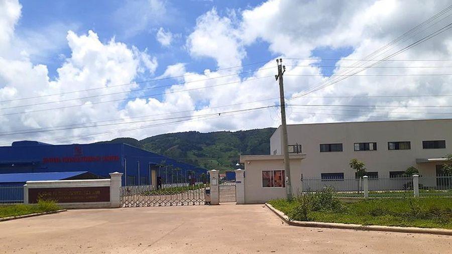 Phạt 1 công ty ở Lâm Đồng 522 triệu đồng vì gây ô nhiễm môi trường