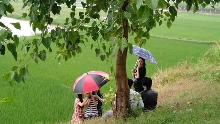 Sau khi phát ngôn 'gây bão' về đàn ông Việt, Michiyo Phạm Ngà tung MV hài kịch Bolero