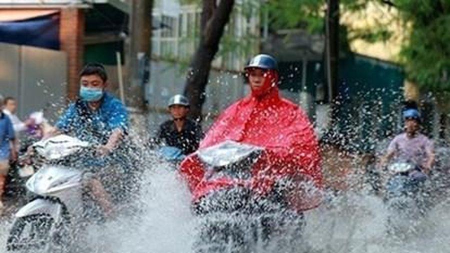 Tin tức thời tiết ngày 8/8/2020: Thủ đô Hà Nội mưa rào và dông rải rác