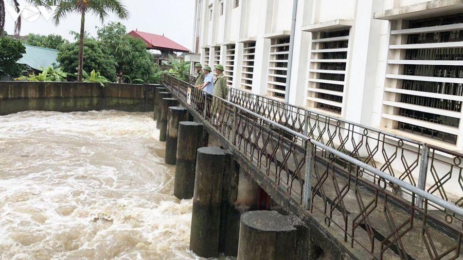 Mưa lớn kéo dài, nhiều diện tích lúa mùa ở Hải Dương bị ngập