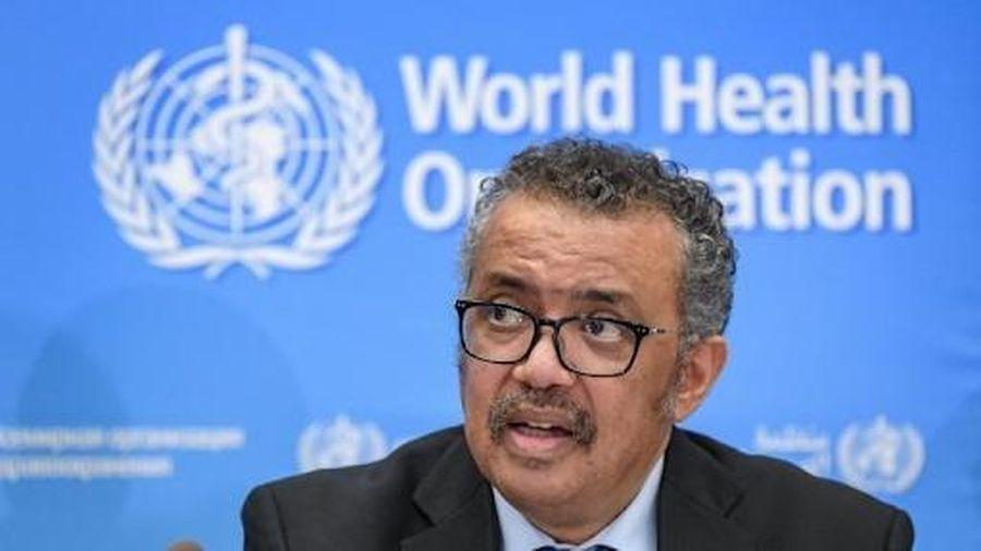 WHO: Thử nghiệm giai đoạn cuối không có nghĩa vắc xin đã sẵn sàng