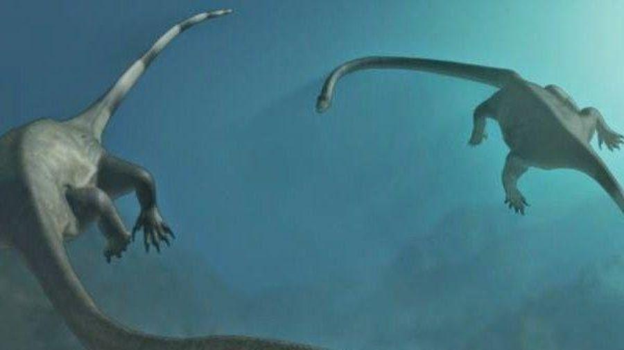Phát hiện chấn động lịch sử vê hài cốt loài thủy quái cổ dài dưới đáy đại dương
