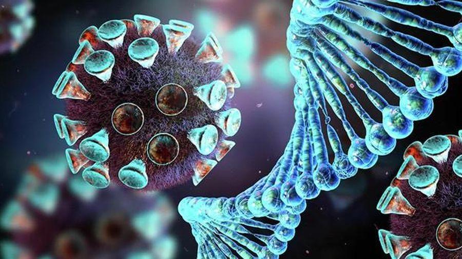 Phát hiện ra 'điểm yếu' của virus SARS-CoV-2