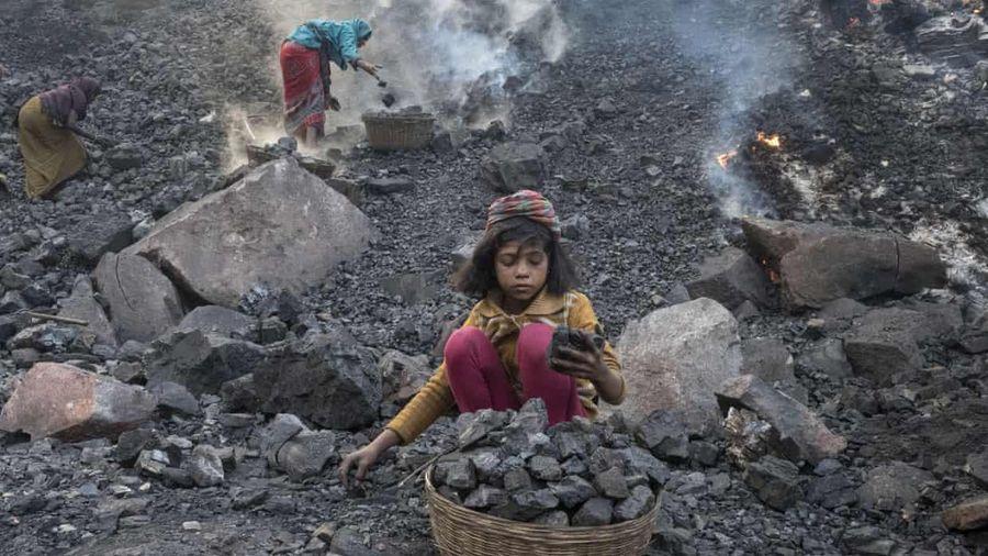 Ấn Độ lập 40 mỏ than 'tự chủ', rừng cổ thụ 1,7 tỷ m2 bị đe dọa