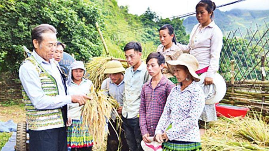 Bộ Tư lệnh Thủ đô Hà Nội xây dựng đội ngũ cán bộ 'tinh, gọn, mạnh'
