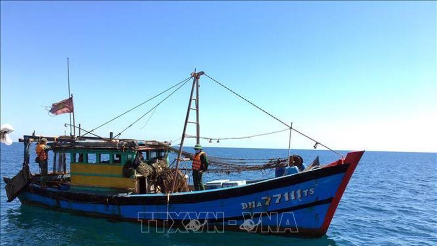 Bắt giữ một tàu giã cào trái phép gần bờ biển Lăng Cô