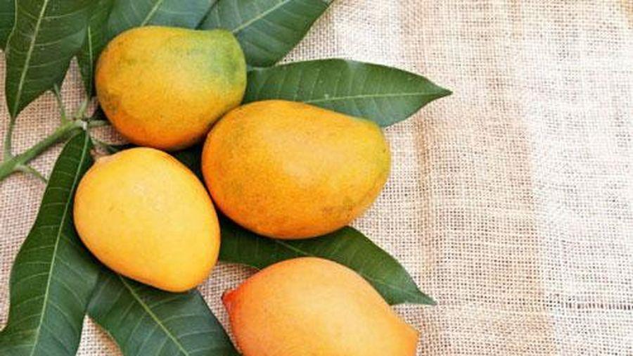 Những người bị tiểu đường cần tránh xa 10 loại trái cây sau