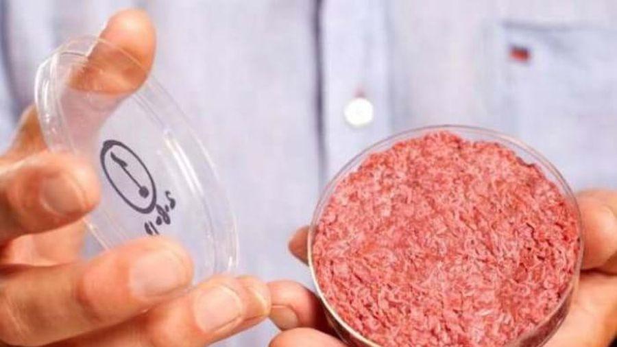 Thịt nhân tạo được sản xuất trong không gian